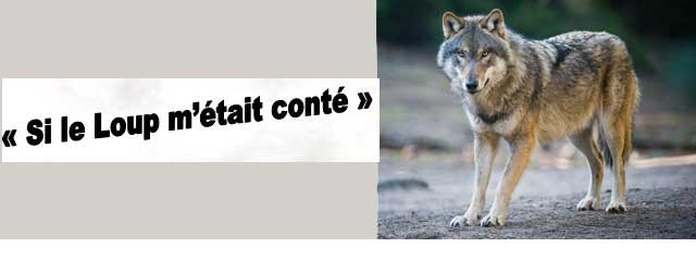 loup_une